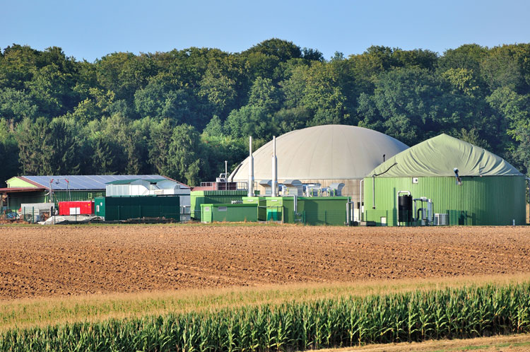 Anaerobic Digester Plant