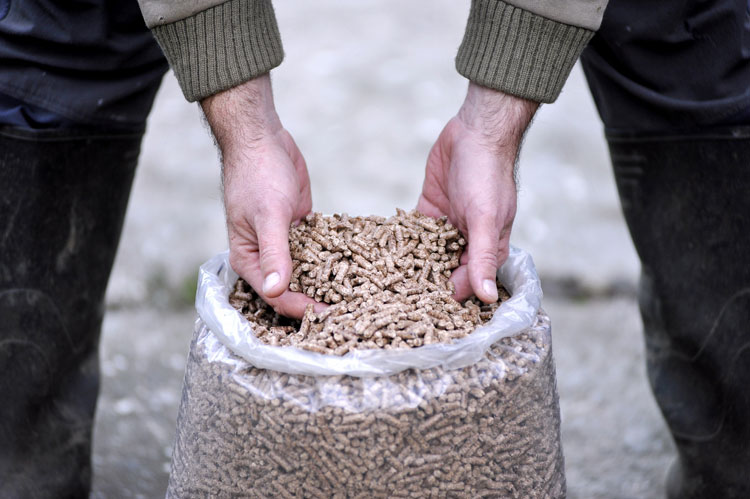 Hands lifting Biomass pellets from a transparent bag